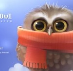 Cute And Lively Wallpaper For Android Little Owl