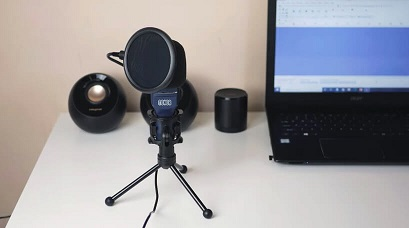 Gamer mic